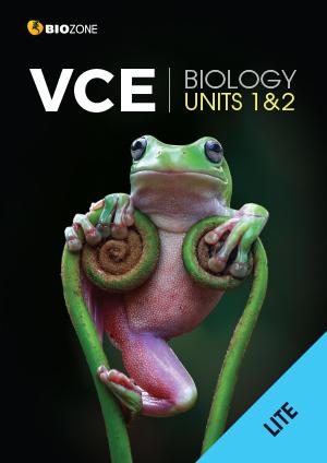 VCE11-2
